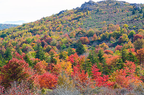 Hiking in Grayson Highlands Photo A Day Project  (photo by Jay Capers)